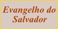 Evangelho do Salvador
