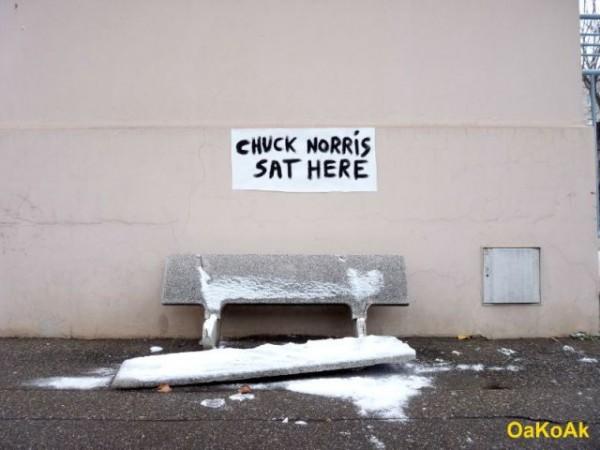 humor nas ruas (11)