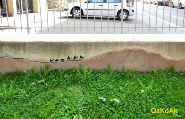 humor nas ruas (9)