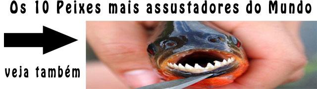 10-peixes-mais-assustadores-do-mundo-